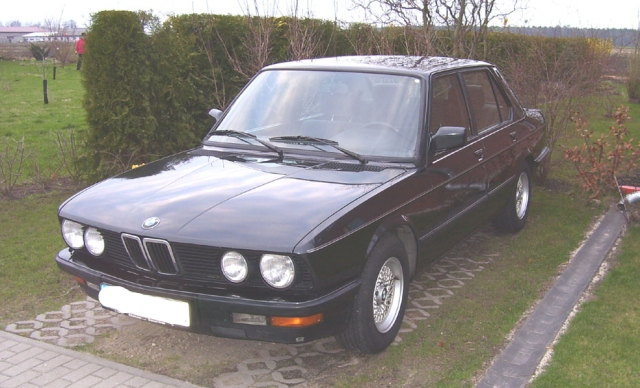 1981 bmw 520i e28 related infomation specifications weili automotive network. Black Bedroom Furniture Sets. Home Design Ideas